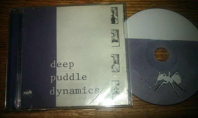 Cover: Deep Puddle Dynamics - The Taste Of Rain___Why Kneel-1999-FTD_INT