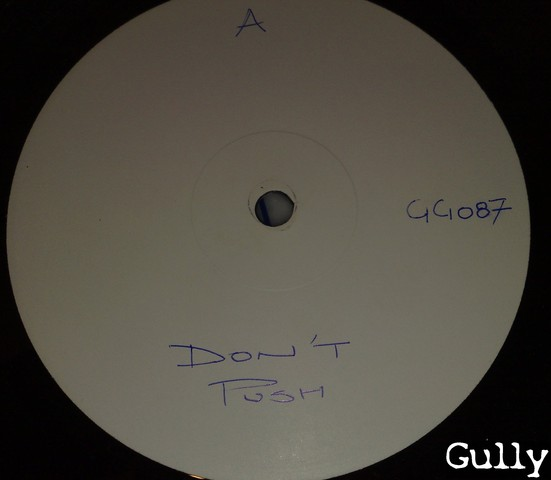 Cover: Unknown Artist - Dont Push (12_Inch_White_Label_GG_087)-VLS-1981-Gully
