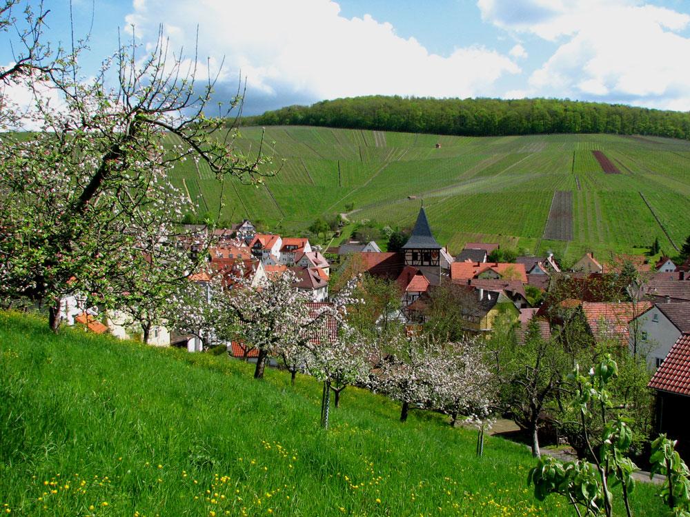 Strümpfelbach weinstadt