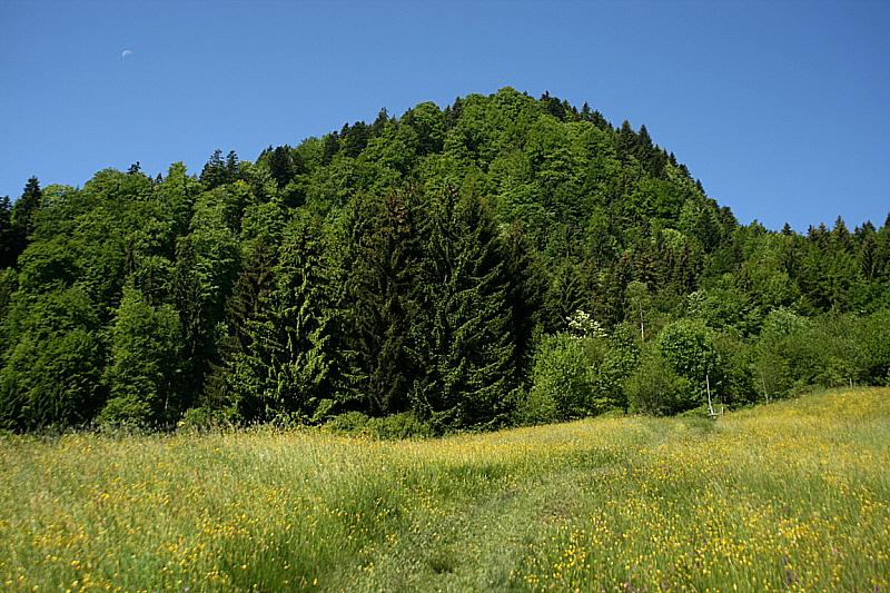 http://www.abload.de/img/05.06.10_saftigsusk.jpg