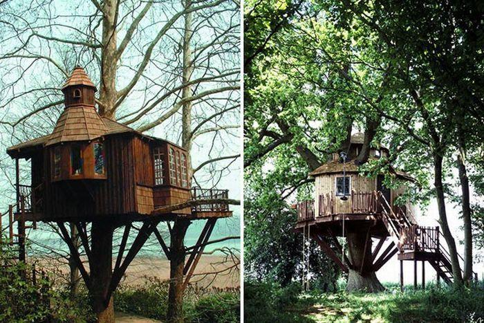 Domki na drzewie 2