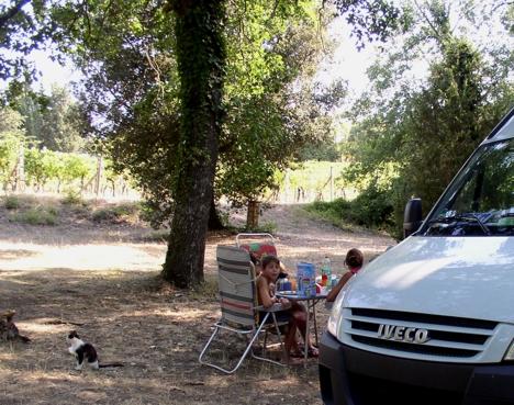 Camping zwischen den Weinbergen