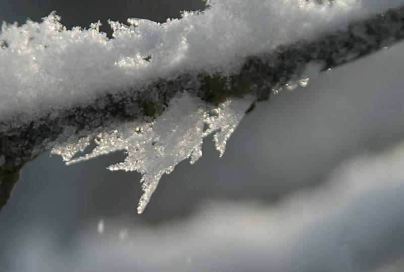http://www.abload.de/img/12.01.10_kogeleispbjp.jpg