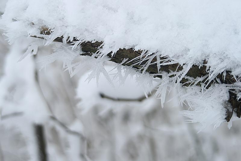http://www.abload.de/img/12.01.10_reif2rbcl.jpg