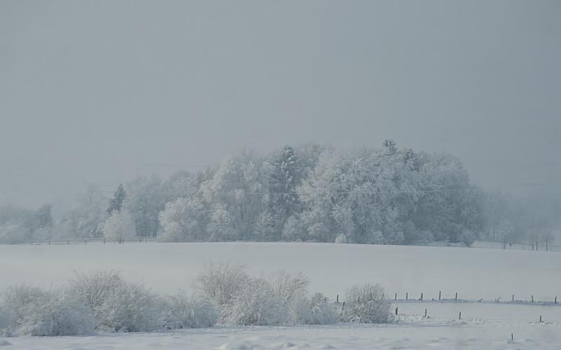 http://www.abload.de/img/12.01.10_winterkleidzx8i.jpg