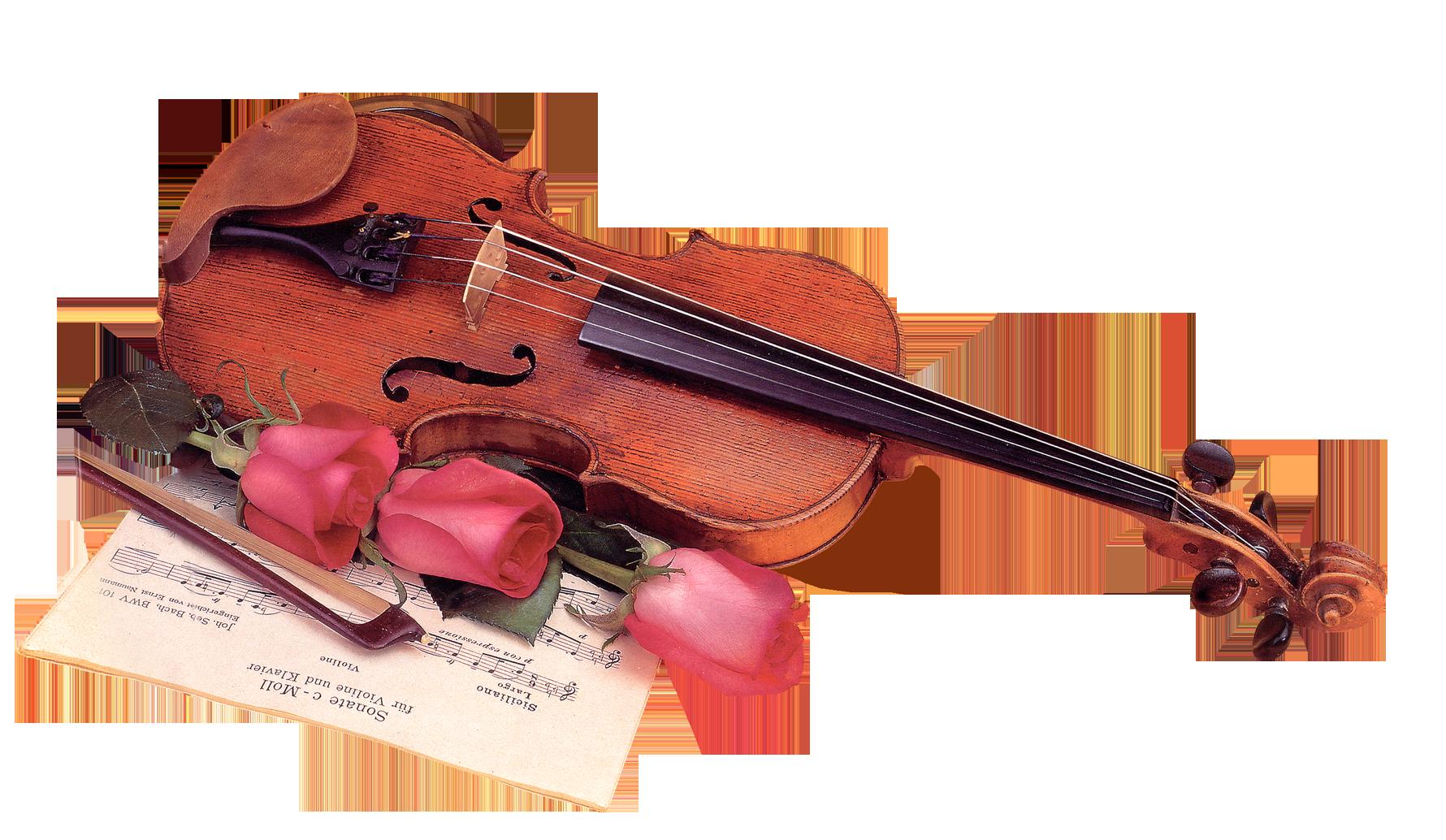 Müzik aletleri li keman resimleri temalar için müzik aletleri