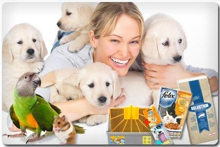 Groupon: 30€ zoo-gigant Gutschein für nur 14,95€ - Tierbedarf, Katzenfutter, Streu, Hundefutter...