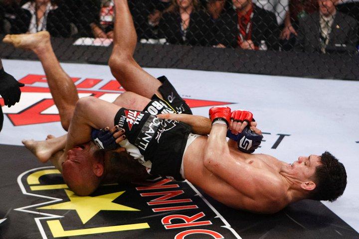 Diaz gewinnt den Kampf via Armbar