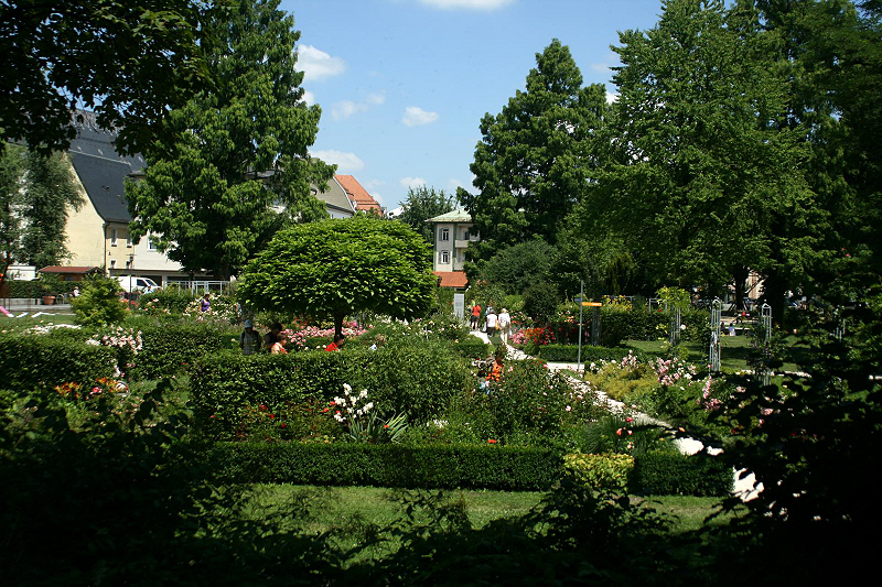 http://www.abload.de/img/19.07.10_riedergarten2cs1.jpg