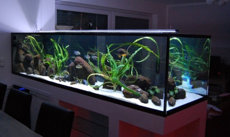 2000l malawi r uber 302x86x70 seite 4 aquarium forum. Black Bedroom Furniture Sets. Home Design Ideas