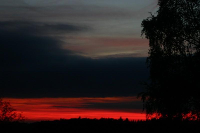 Tagesbilder(14.Okt.2011) 2011-10-14192800x533sum0