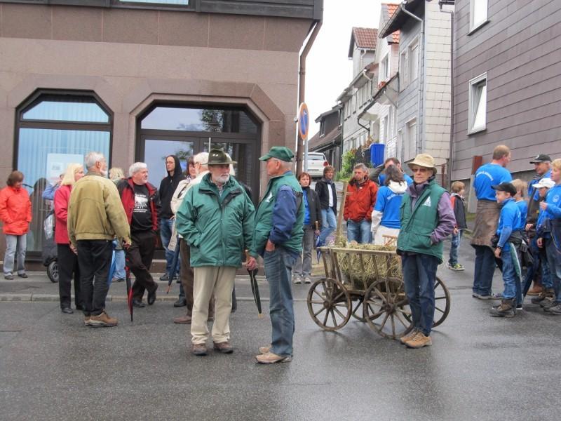 Wiesenblüten-Festumzug_03.06.2012 2012-06-03003800x600p37ia