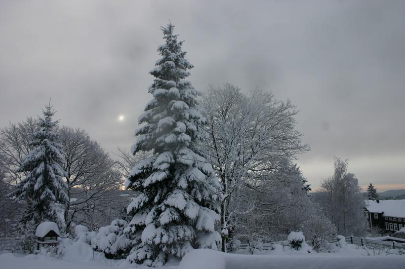 Winter  2012 2012-12-13033i7rp7