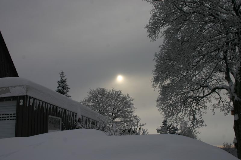 Winter  2012 2012-12-13137purz1