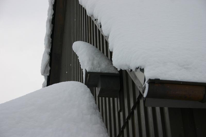 Winter  2012 2012-12-13152fkqs0