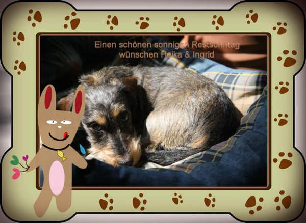 An den Beitrag angehängtes Bild: http://www.abload.de/img/20120325_323-sonntag114ri.jpg