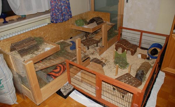 eigenbau sicherer machen bitte um einsch tzungen meerschweinchen haltung. Black Bedroom Furniture Sets. Home Design Ideas