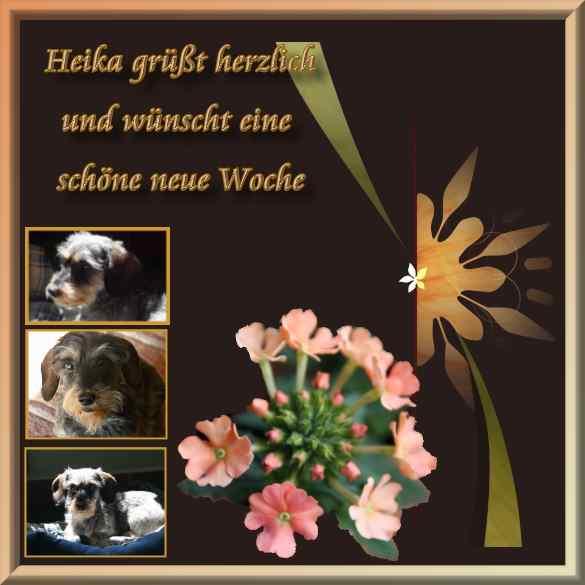 An den Beitrag angehängtes Bild: http://www.abload.de/img/24-6-12-neuwogzr7z.jpg