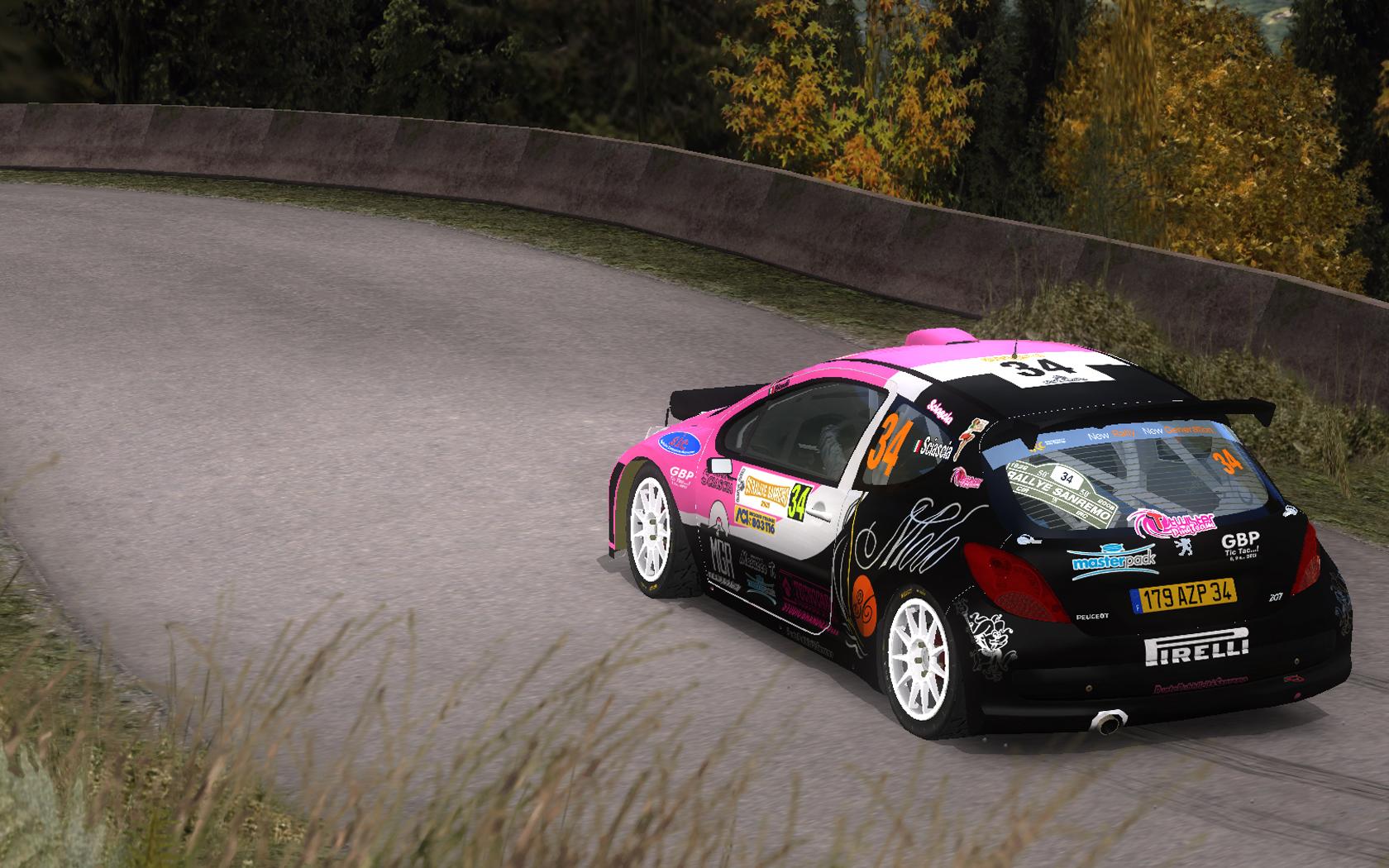 PEUGEOT 207 S2000 Rally  SANREMO 2008 SCIASCIA
