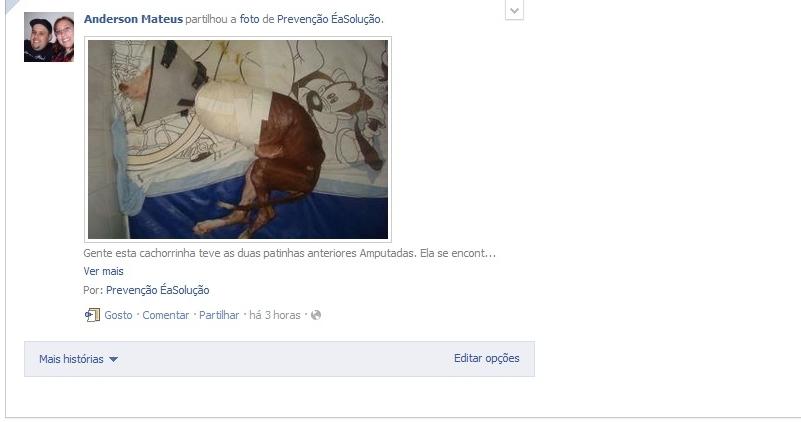 Facebook eterno - Página 6 376uqt
