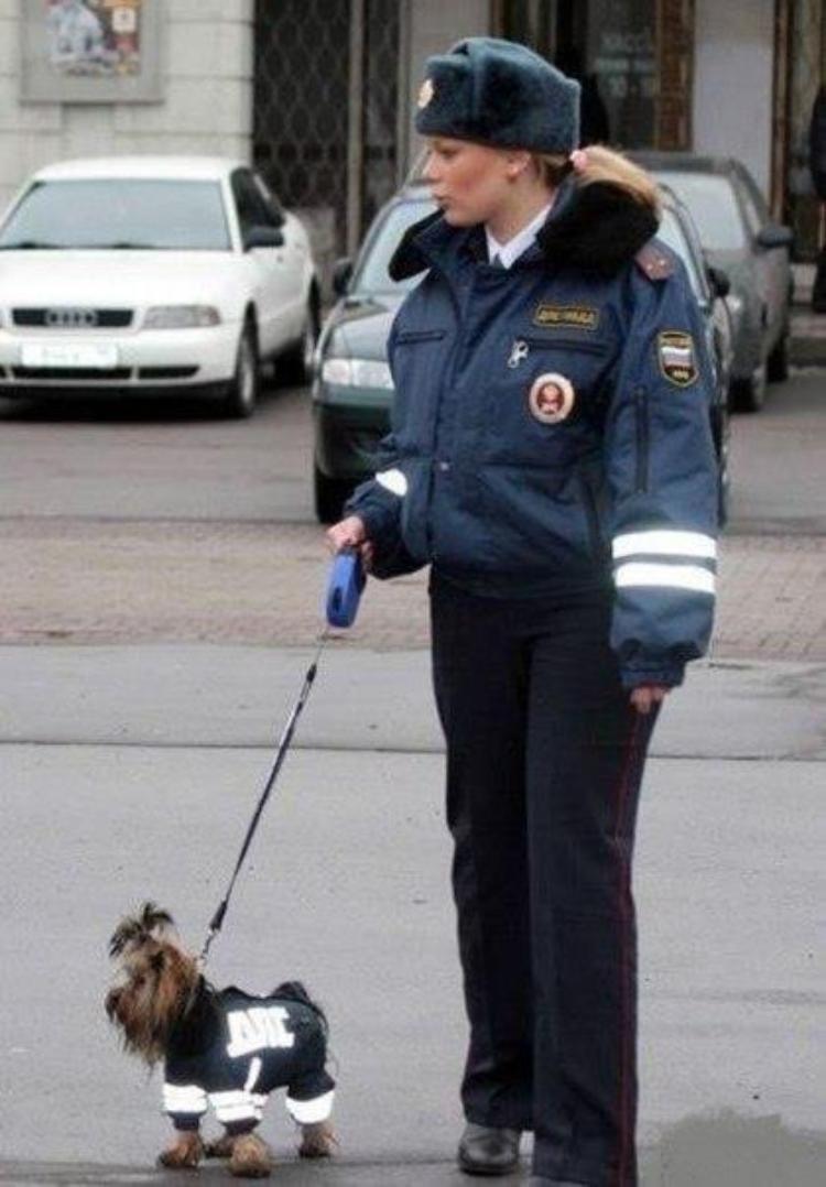 Tymczasem w Rosji #5 21