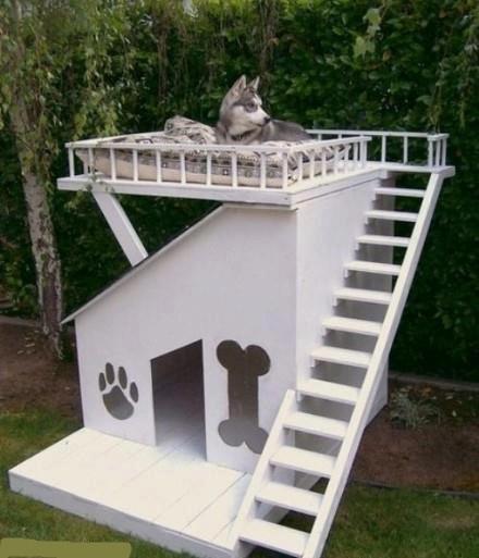 ideen f r ausgefallene hundeh tten. Black Bedroom Furniture Sets. Home Design Ideas