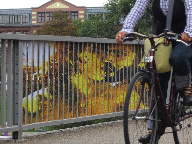 Street Art: Zebrating 18