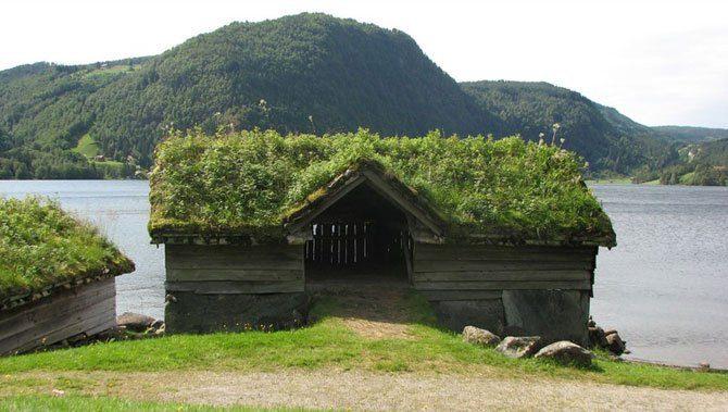 Zielone dachy w Norwegii #2 27