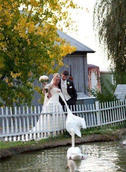 Zabawne zdjęcia ślubne #2 35