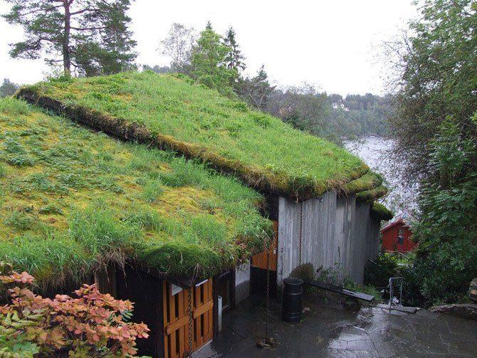 Zielone dachy w Norwegii #2 25