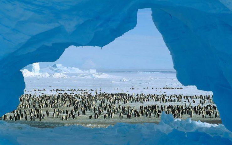 Góry lodowe 32