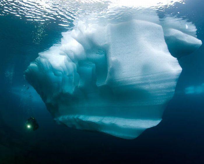 Nurkowanie pod lodem 9