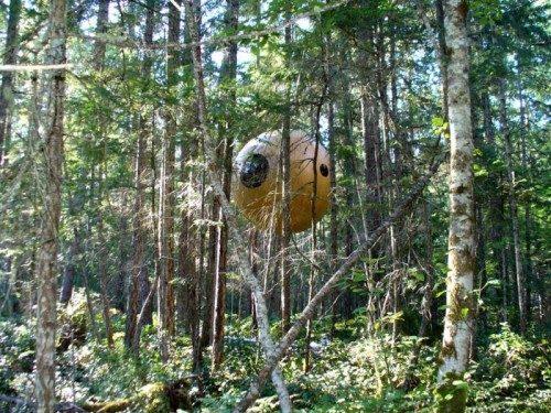 Domek na drzewie zamiast kempingu 9