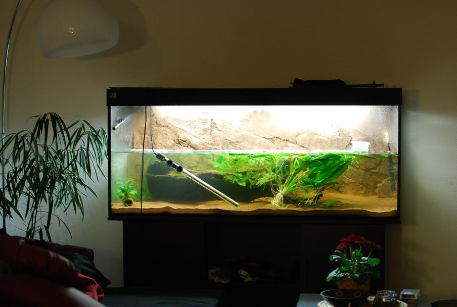 birth of nature oder mein 450 l projekt aquarium forum. Black Bedroom Furniture Sets. Home Design Ideas