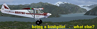 bushpilot-whatelse32unp.jpg