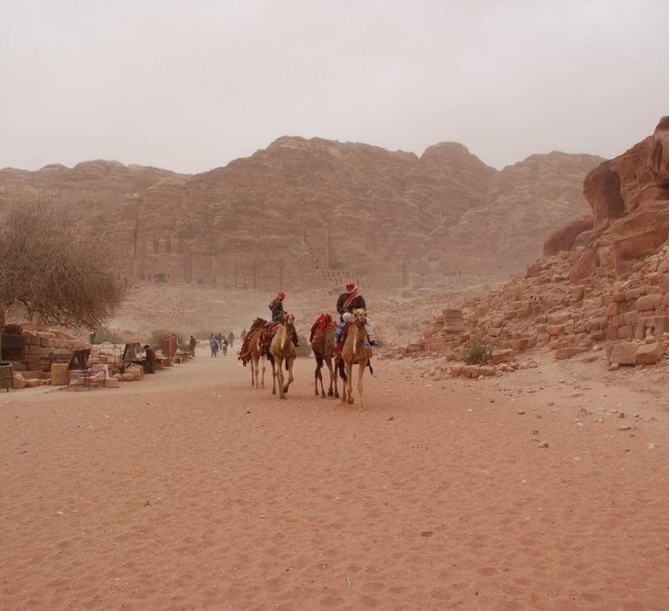 Petra - miasto wykute w skałach 16