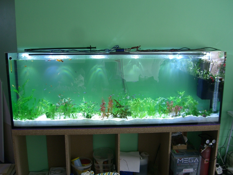 aquarium led led forum. Black Bedroom Furniture Sets. Home Design Ideas