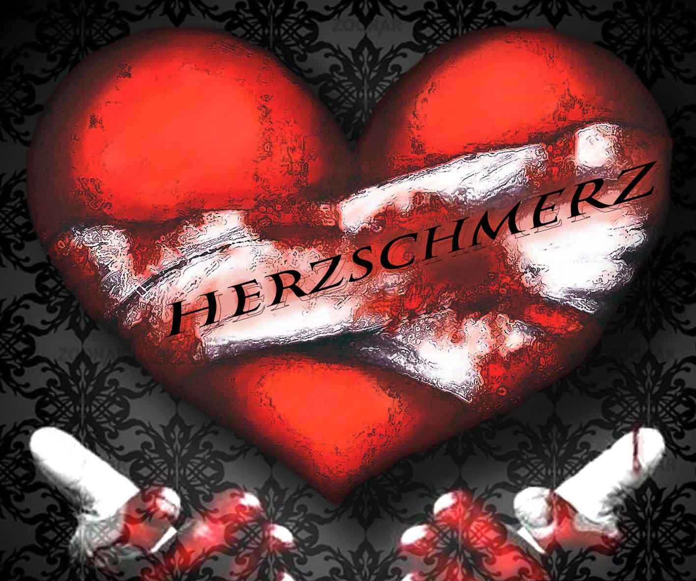 cover-herzykyhg.jpg