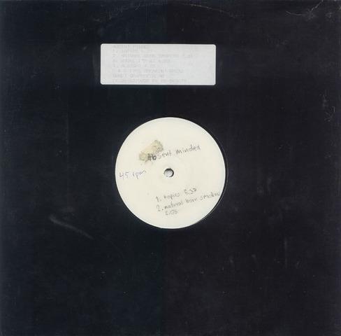 Absent Minded – Topics (Vinyl EP) (1995) (320 kbps)