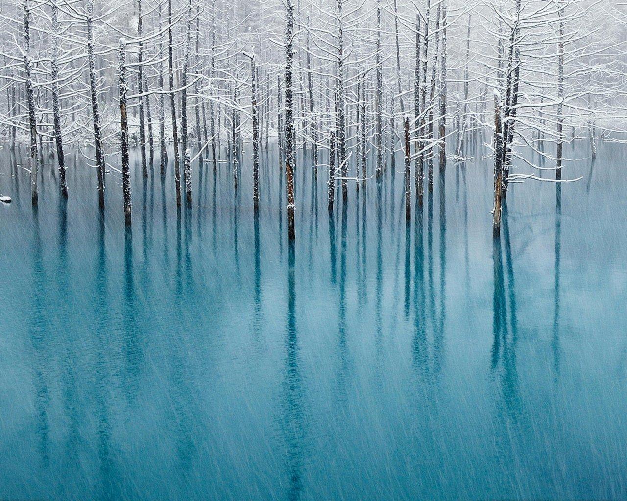 Urok zimy 2