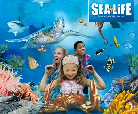 ... . Sea Life Center ab 9,35? (Berlin, Hannover, Timmendorfer Strand