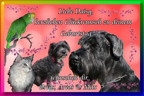 An den Beitrag angehängtes Bild: http://www.abload.de/img/daisyrn6q2.jpg