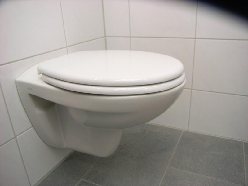 diana aktiv wc sitz mit deckel wei edelstahlscharnier ebay. Black Bedroom Furniture Sets. Home Design Ideas