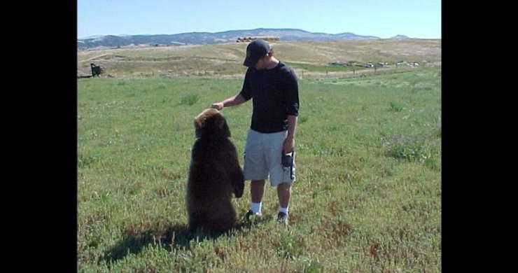 Niedźwiedź - najlepszy przyjacieł człowieka ? 4