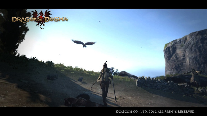 how to get new skills in dragons dogma