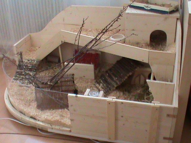eure k fige oder eigenbauten meerschweinchen haltung seite 93. Black Bedroom Furniture Sets. Home Design Ideas