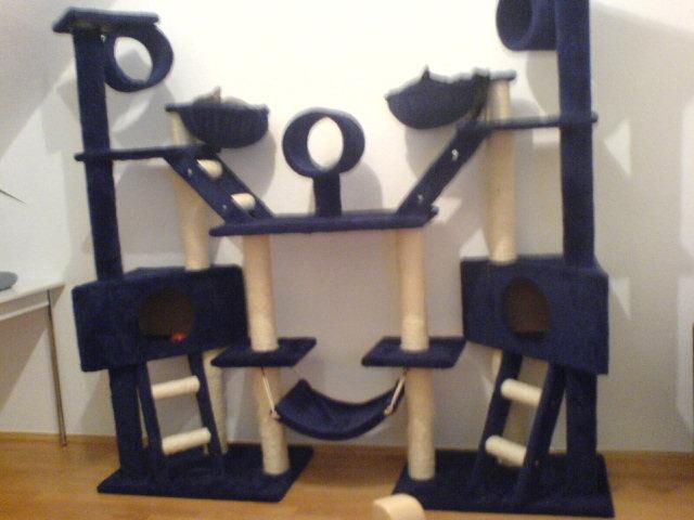 zeigt eure haustiere die fortsetzung 1 2 seite 12. Black Bedroom Furniture Sets. Home Design Ideas
