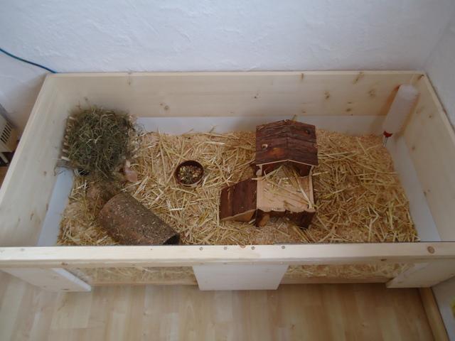 k fig marke eigenbau meerschweinchen haltung. Black Bedroom Furniture Sets. Home Design Ideas