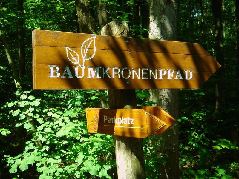 Baumkronenpfad im Nationalpark Hainich Dsc08291qr13
