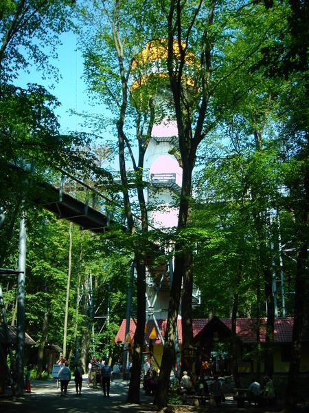 Baumkronenpfad im Nationalpark Hainich Dsc08295hpl3